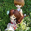 Vivaldi et olivia, pause au jardin