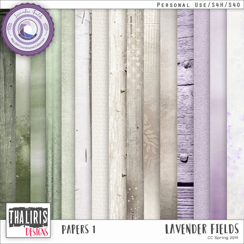 THLD-LavenderField-Papers1-pv