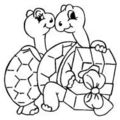 Coloriage - tortue