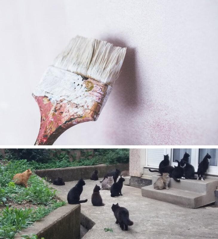 art-wall-brush-painting-large-768x512-vert