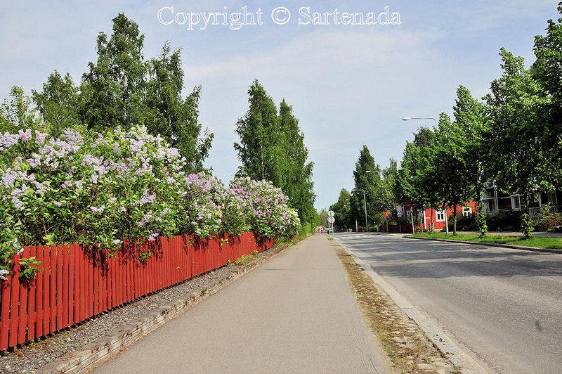 Balade d'été à Mikkeli_Finlande_ (16)