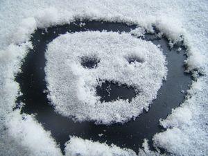neige_janvier_2010_089