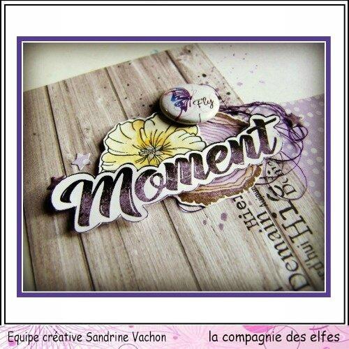 Sandrine VACHON dt LCDE janvier rédac violet (5)