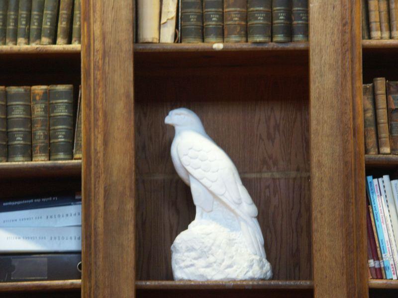 mysterious_bird