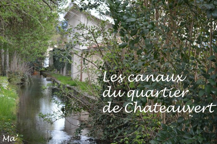 150329_canaux_chateauvert0