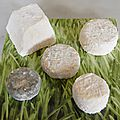Comment bien choisir les fromages et comment les conserver ?