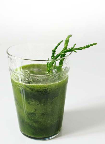 Soupe froide algues salicornes
