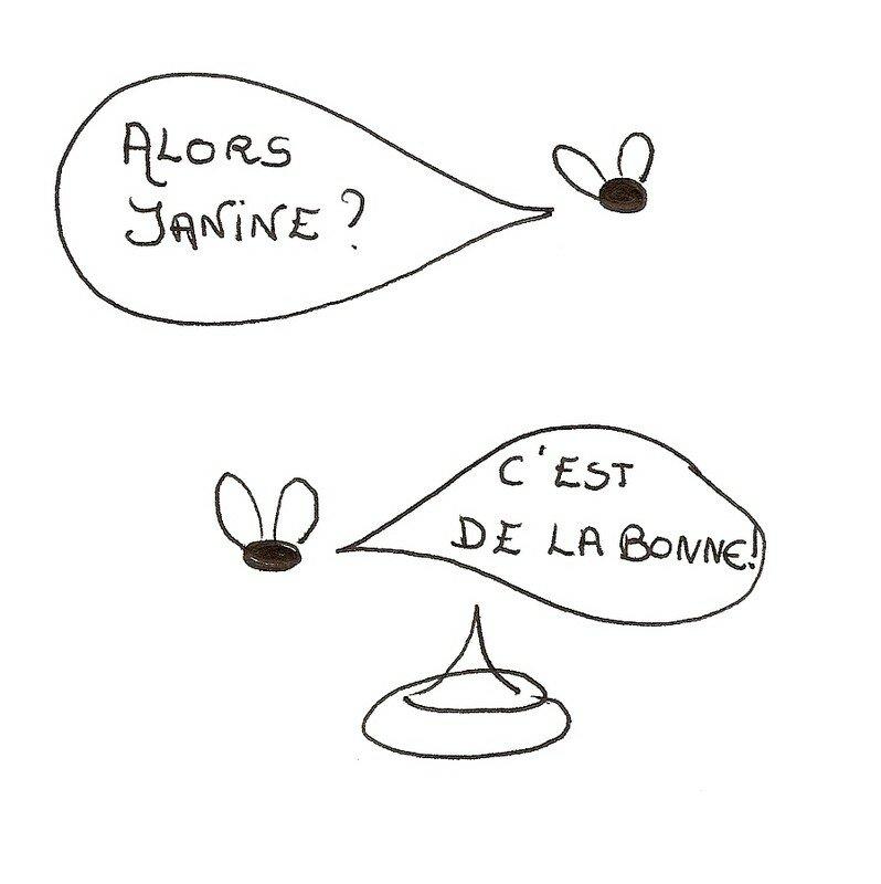 Janine et Marcel,ou la trépidante vie de deux mouches ...