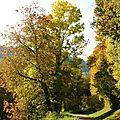 Belles couleurs d'automne (fin)