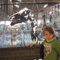 Bruxelles novembre 2010 024