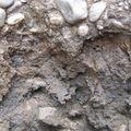 contact grave / argile réductique, en profondeur dans le solum p