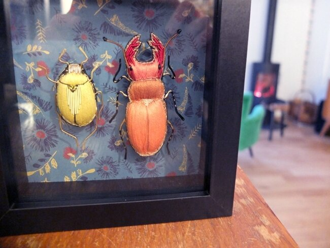 insectes1