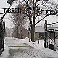 Auschwitz: le vrai travail?