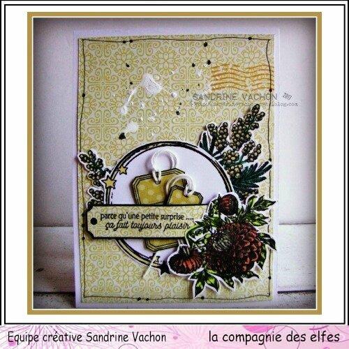 Sandrine VACHON Dahlia dt LCDE déc (1)