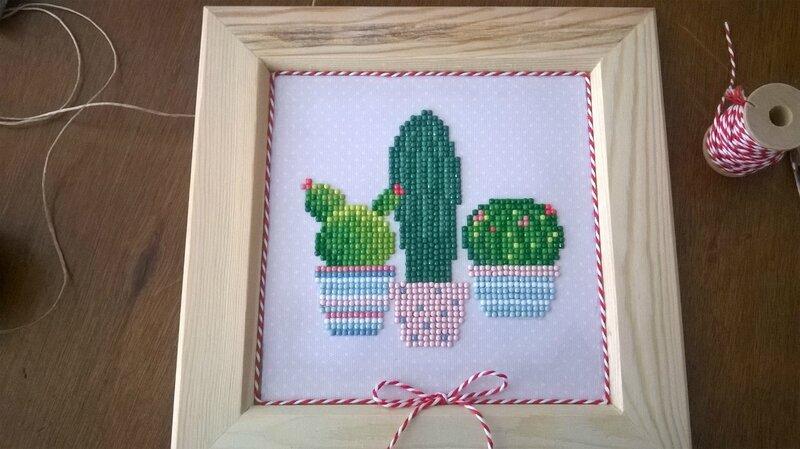 cactus 1b6