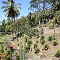 Le jardin LATOUCHE au Carbet, à voir!