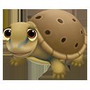 icon_turtle_adult_spinysoftshell_128-74fbd6ef83481bb31643e2a