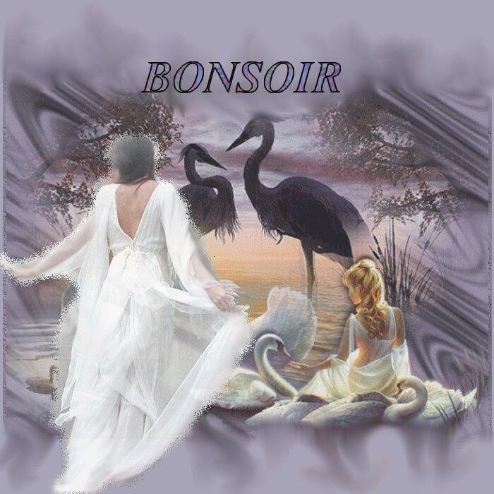 BONSOIR AMIS(ES)