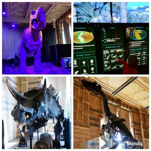 Natural History Museum©Kid Friendly