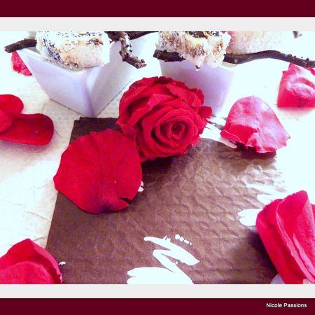 roul__chocolat4