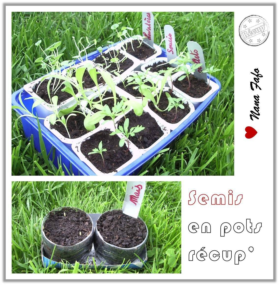 semis en pots01