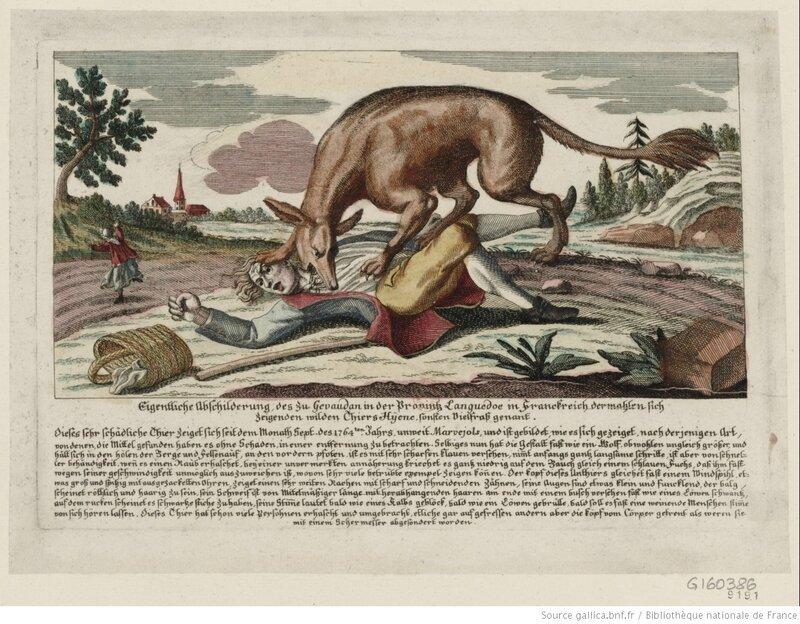 Bête_du Gévaudan (1764) 1