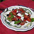 Entrée ou plat complet : salade tomates cerise, mozzarella et anchois