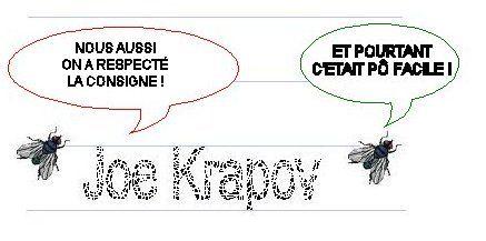 mouche3