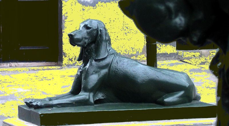 Le Sphinx Canin