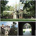 Princeton campus3