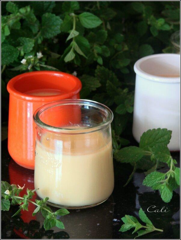 Petites Crèmes à la Mélisse & Gelée de Mélisse -sans gluten-sans lactose- 001
