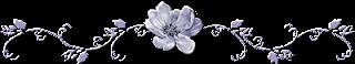bannière fleur bleue 17 05 2016
