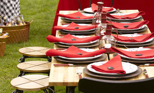 fourth_of_july_barbecue_table_setting