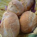 Petits pains au levain pour sandwichs