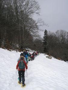 neige_2011_004