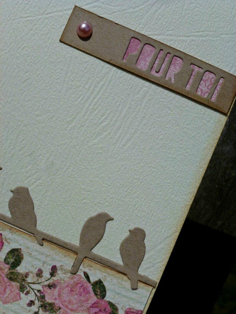 08-Carte-oiseaux