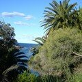 Coastal Walk - vue de haut 2