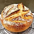 La poolish, 2ème du grand prix du boulanger 2017