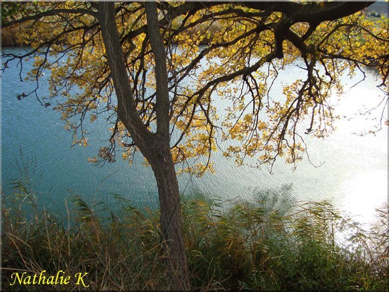 _c_LNK_le_12_novembre_2010_021_copie
