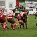 23IMG_0574T