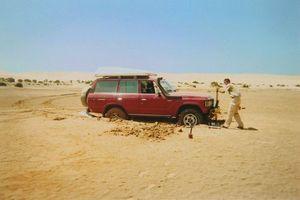 plantage maroc 4 001 - Copie