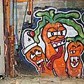 cdv_20130628_18_carotte