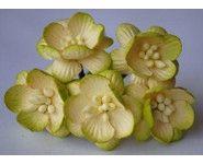 Fleur-de-cerisier-VertCreme-190-2-small-1-www-lesscrapbidulesdauria-kingeshop-com[1]