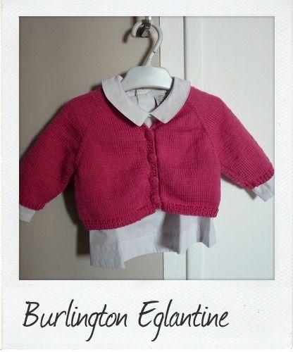 burlington églantine