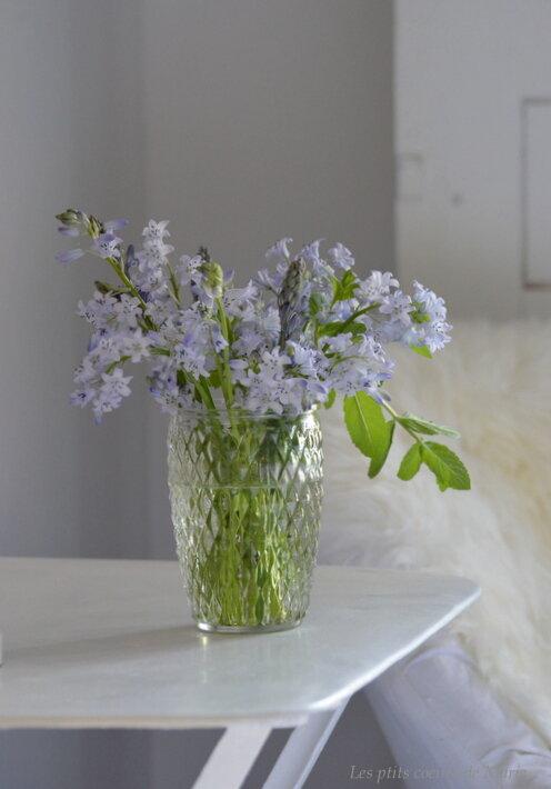 jardinage02