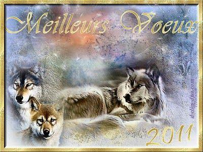 carte_bonne_annee_2011