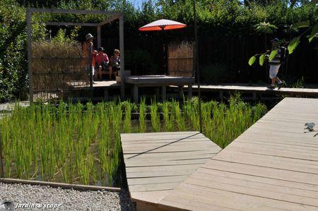 24-Jardin-des-rizières