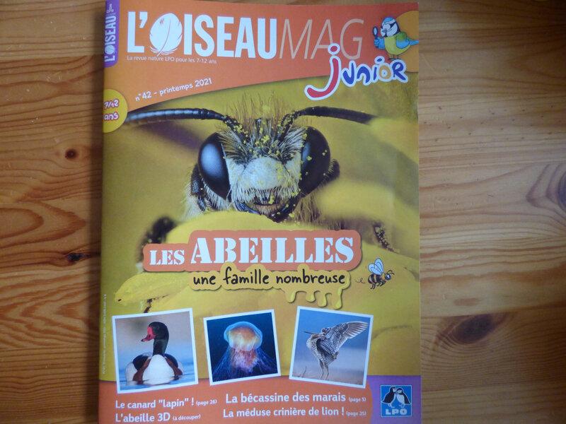 Oiseau Mag Printemps 21 (1)