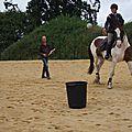 équitation d'extérieur - parcours en terrain varié (126)