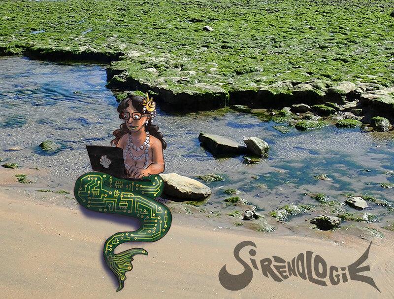 Une sirène sur ordinateur à la plage